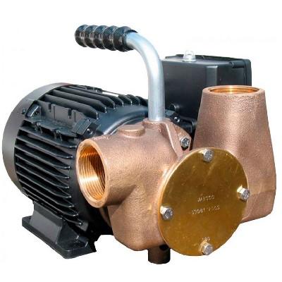 Jabsco - Pompe multi-usages Dockside Utility 53081-2003-230- 80 Litres/minute