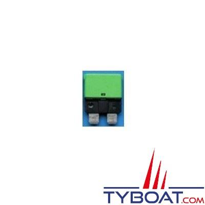Disjoncteur thermique type 227 unipolaire réarmable 12/24V vert clair 30A