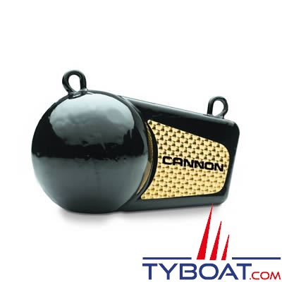 Lest pour treuil de pêche Cannon 6 livres - 2,7kg