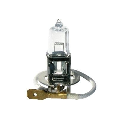 Ampoules H3