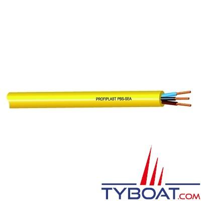 PROFILPLAST - Câble électrique souple 100% étanche PBS - Sea Marine - 3G6 (25 mètres)