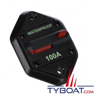 Reya - Disjoncteur à encastrer 100 ampères