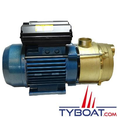 Pompe multi-usages 100 Litres/minutes - mono 220 Volts